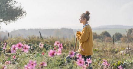 Statt Rasen: Eine Blumenwiese lockt Insekten und Vögel an und ist weniger aufwendig zu pflegen.