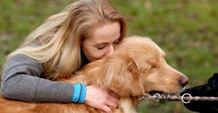 Wer sich für einen neuen Hund entscheidet, sollte sich vor Augen führen: «Er wird anders sein als der alte.»