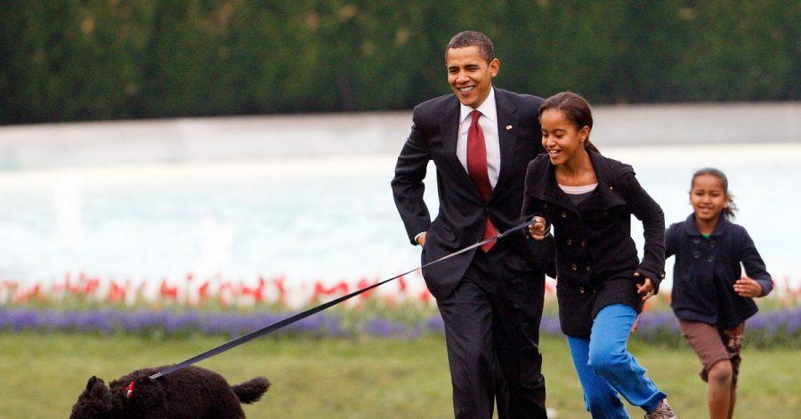 Malia Obama 2009 mit Familienhund Bo,   gefolgt von damaliger US-Präsident Barack Obama und Sasha Obama.