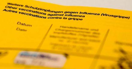 Ein Impfbuch mit den Feldern für die Impfung gegen Influenza (Virusgrippe).