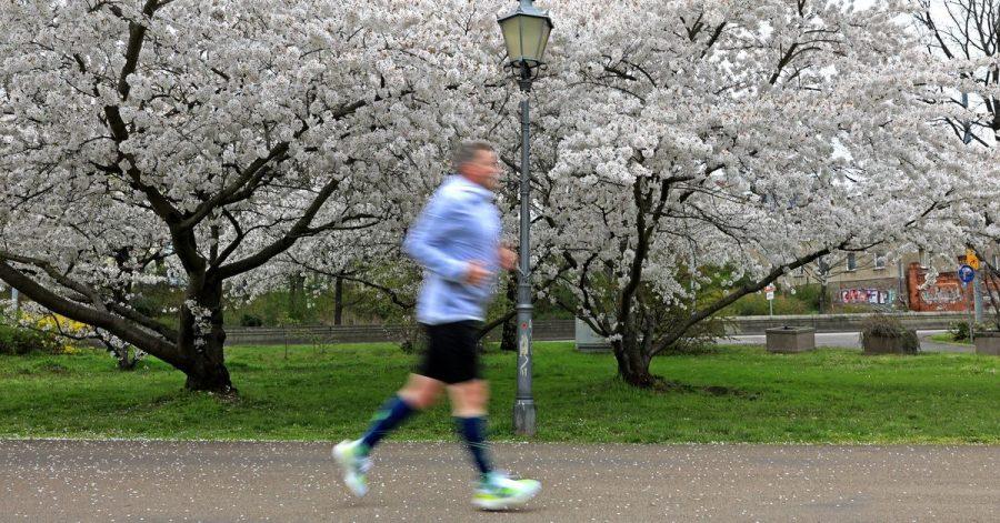 Viele Einsteiger überfordern ihren Körper auf den ersten Joggingrunden.