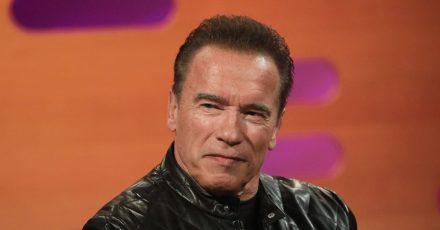Arnold Schwarzenegger freut sich auf den Kinosommer.