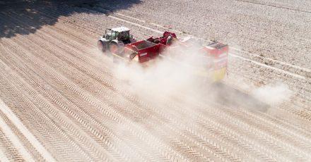 Ein Landwirt erntet Kartoffeln auf einem staubtrockenen Feld in der Region Hannover (2020).