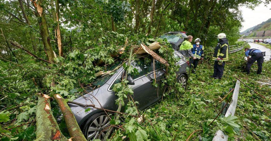 Im rheinland-pfälzischen Braubach krachte ein Baum auf ein geparktes Auto.