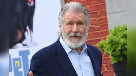 """Harrison Ford ist das Gesicht der """"Indiana Jones""""-Reihe. (elm/spot)"""
