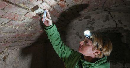 Doreen Werner, Biologin vom Leibniz-Zentrum für Agrarlandschaftsforschung (ZALF) am Institut für Landnutzungssysteme AG Medizinische Entomologie, fängt Stechmücken in einem alten Eiskeller.