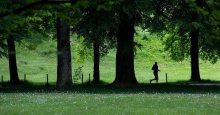 Ein Jogger im Englischen Garten in Bewegung liegt in der Natur des Menschen - von Anfang an.