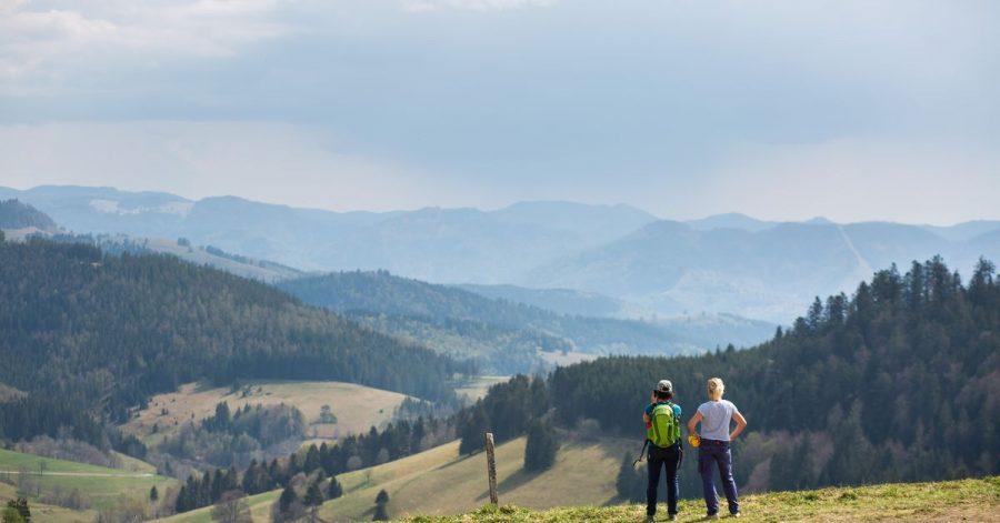 Schöner Schwarzwald: Die Touristiker vor Ort denken über eine Abgabe für Tagestouristen für bestimmte Attraktionen nach.