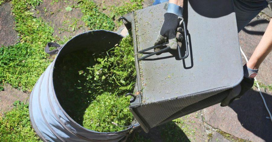 Frisch gemähtes Gras ist im Garten vielseitig einsetzbar - Rasenschnitt eignet sich zum Beispiel zum Mulchen.