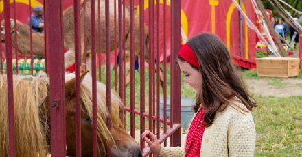 Elisa de Lambert als zehnjährige Cécile in einer Szene des Films «Mein Freund Poly»
