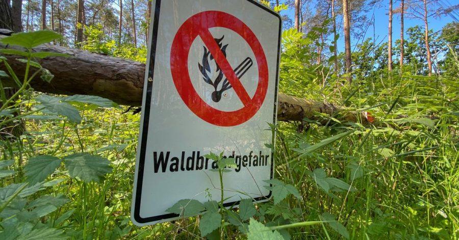 Mit der ersten Hitzewelle des Jahres in Deutschland steigt die Gefahr von Waldbränden weiter an.