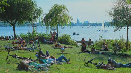 Hamburg wurde zum Grünen Energiemeister gekürt, doch auch andere Regionen können in Sachen Nachhaltigkeit punkten. (eee/spot)