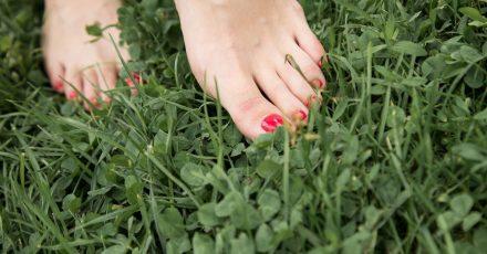 Ein schönes Gefühl mit nackten Füßen über den Rasen zu laufen: Gut gepflege Füße können sich im Sommer sehen lassen.