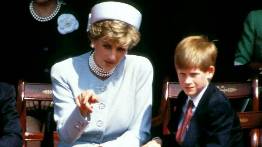 Der kleine Prinz Harry an der Seite seiner Mutter Diana im Jahr 1995. (stk/spot)