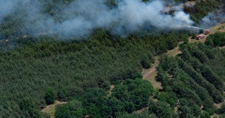 In einem Waldstück bei Jüterbog (Brandenburg) bekämpfen Feuerwehrleute einen Waldbrand.
