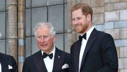 Prinz Charles (l.) wird seinen Sohn Prinz Harry im Juli nicht treffen.  (ili/spot)