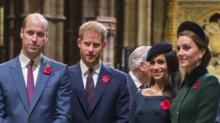 Da war noch alles im Reinen: Prinz William, Prinz Harry, Herzogin Meghan und Herzogin Kate im November 2018. (ncz/spot)