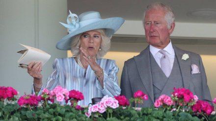 Herzogin Camilla und Prinz Charles beim Royal Ascot 2021 (mia/spot)