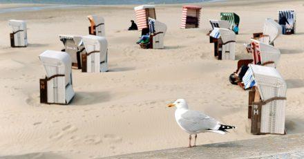 Nahziele liegen inCorona-Zeiten im Trend: Die Strandkörbe auf Borkum warten auf mehr Urlauber.