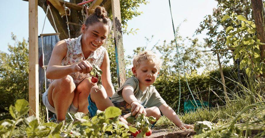 Glücksmomente: Gemeinsam im Beet wühlen, den Pflanzen beim Wachsen zusehen und am Ende auch noch etwas ernten.