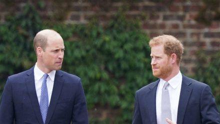 Prinz William (l.) und Prinz Harry auf dem Weg zur Enthüllung der Statue ihrer Mutter Prinzessin Diana. (dr/spot)