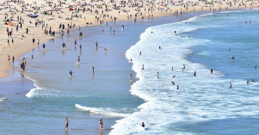 Sydneys berühmter Bondi Beach ist wegen zahlreicher Haie im Wasser vorübergehend geschlossen worden.