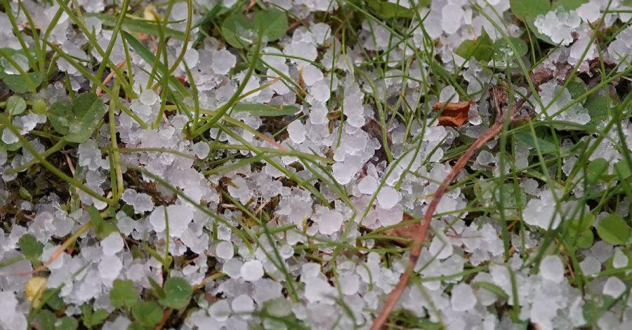 Hagelkörner liegen auf einer Wiese: Nehmen Unwetter in Deutschland zu? Diese Frage stellen sich Versicherer.