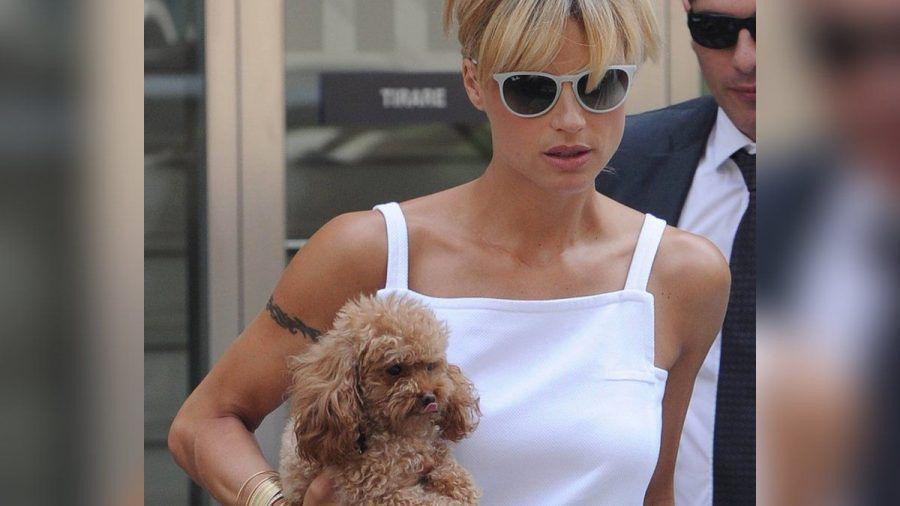 Hunde spielen im Leben von Michelle Hunziker eine große Bedeutung. (stk/spot)