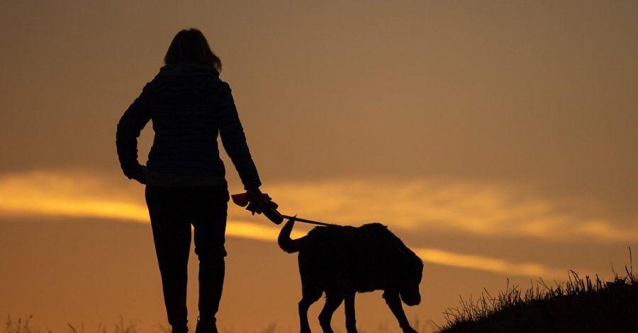 Eine Frau geht am Morgen mit ihrem Hund spazieren.