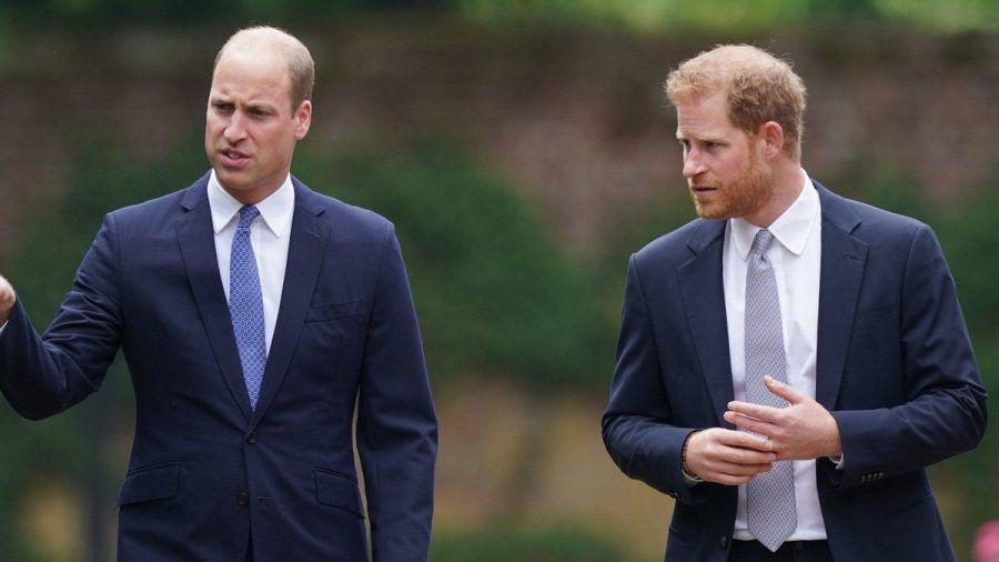 Prinz William und Prinz Harry gemeinsam in London. (hub/spot)