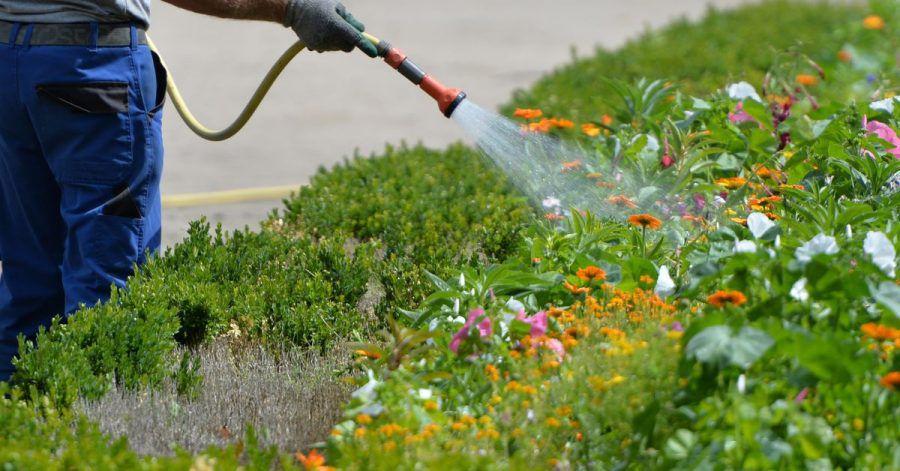 Gartenbewässerung kostet Geld. Mieterinnen und Mieter können an den Ausgaben über die Betriebskosten beteiligt werden.