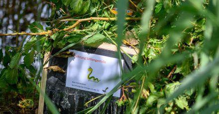 """Eine Kiste mit der Aufschrift """"Achtung Schlangenfalle"""" in Haldensleben."""
