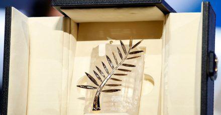 In Cannes wird die  «Palme d'or» (Goldene Palme) vergeben.