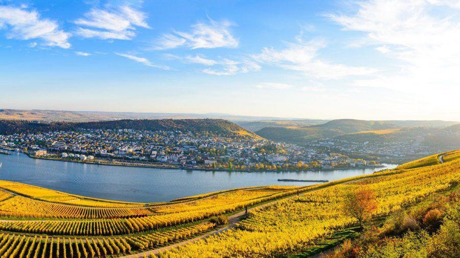 Das Niederwalddenkmal bietet eine traumhafte Aussicht auf den Rhein. (tae/spot)
