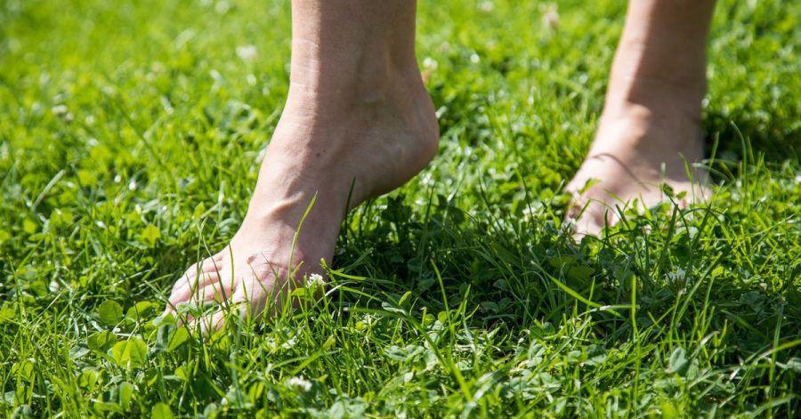 Gras ist ein perfekter Untergrund für die ersten Barfuß-Gehversuche.