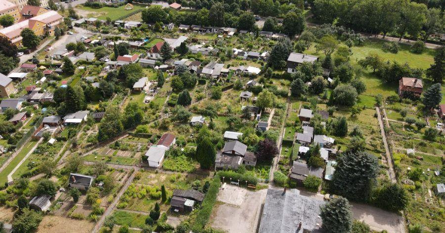 Viele verwilderte ehemalige Kleingärten sind in der Gartenanlage «Einheit» zu sehen.