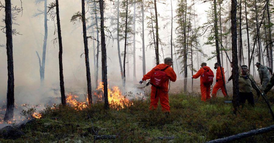 Mittlerweile sind mehr als 9000 Helfer im Kampf gegen die Flammen im Einsatz.