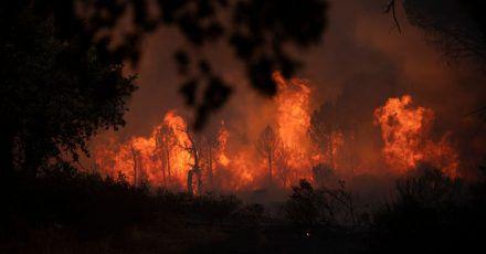 Tausende Anwohner und Touristen mussten vor den Bränden fliehen.