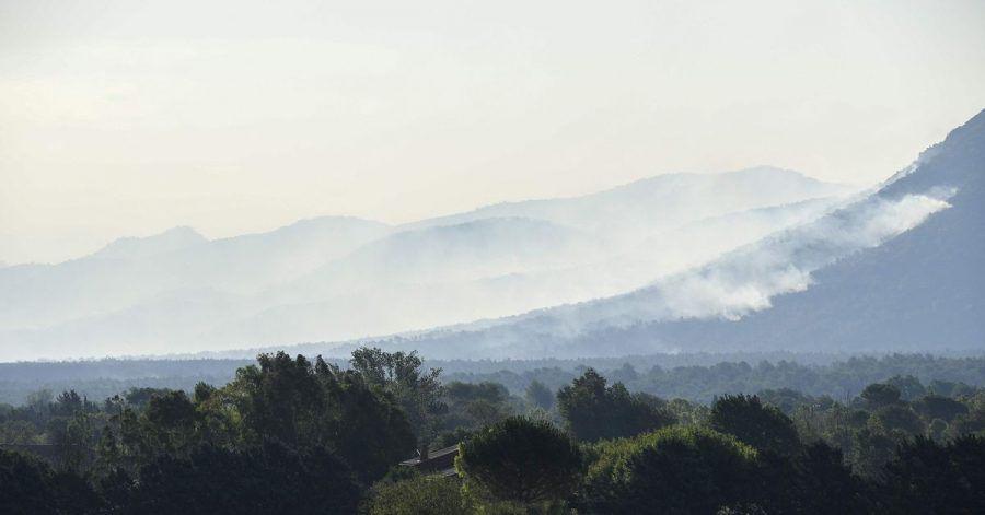 Rauch steigt über dem Wald nahe der Côte d'Azur auf.