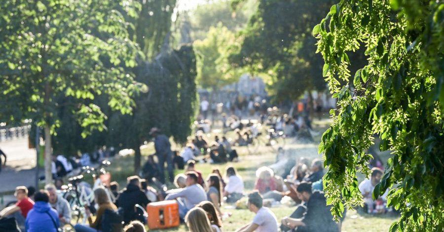 Zahlreiche Menschen sitzen im Licht der untergehenden Sonne auf einer Wiese im James-Simon-Park. Abends und nachts soll der Besuch künftig nicht mehr erlaubt sein.