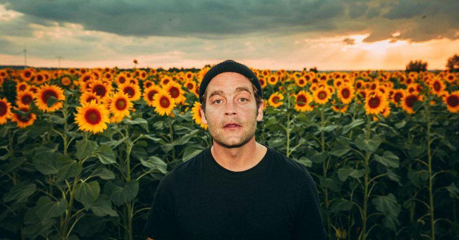 Der Sänger Bosse zeigt sich in einem Sonnenblumenfeld.