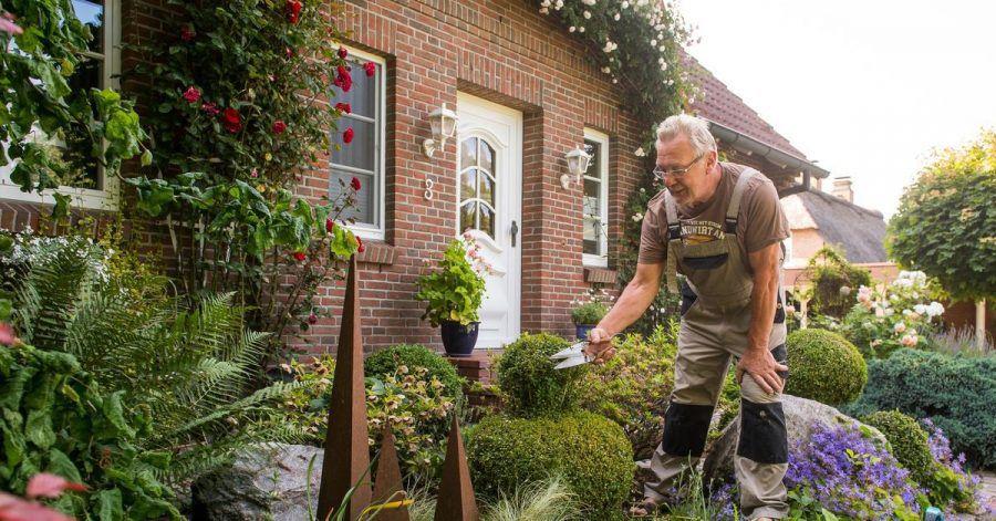 Dicht bepflanzte Gärten kommen besser mit viel Regen und Starkregen-Ereignissen zurecht.