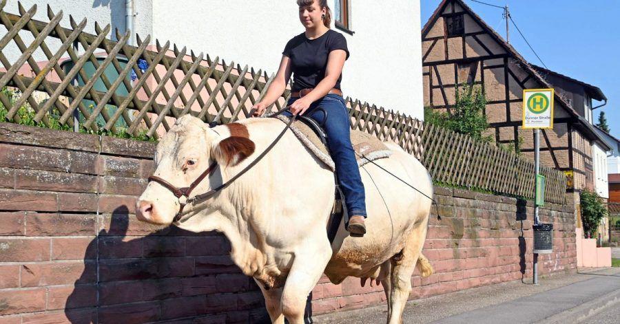 Sonja Keller reitet mit der Kuh Melina aus.