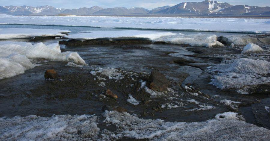 Das kleine noch unbenannte Eiland am nördlichsten Zipfel Grönlands ist möglicherweise die wohl nördlichste Insel der Welt - entdeckt wurde sie von Forschern der Universität Kopenhagen.