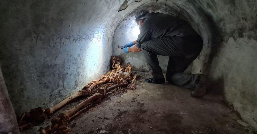 Ein Archäologe untersucht in der versunkenen Stadt Pompeji die mumifizierten Überreste von Marcus Venerius Secundio, einem früheren Sklaven, der nach seiner Freilassung zu Reichtum und damit zu gesellschaftlichem Rang gelangt war.