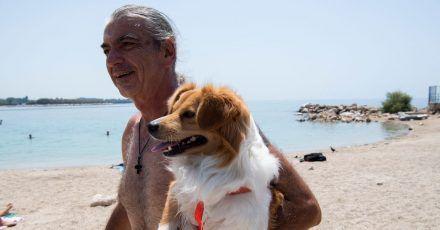 Am Strand in Athen: Menschen und Tiere leiden unter der Hitze: