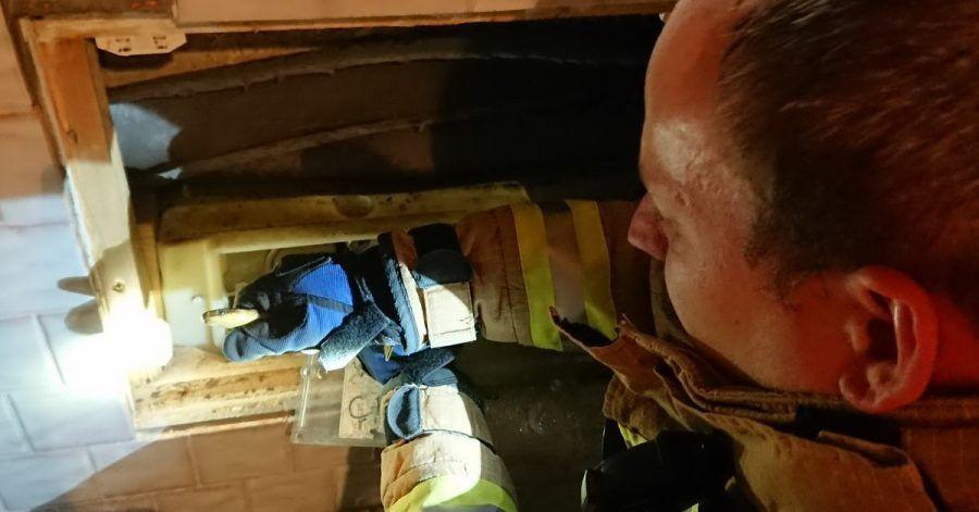 Ein Feuerwehrmann befreit eine ungiftige Äskulapnatter aus einem WC-Spülkasten.