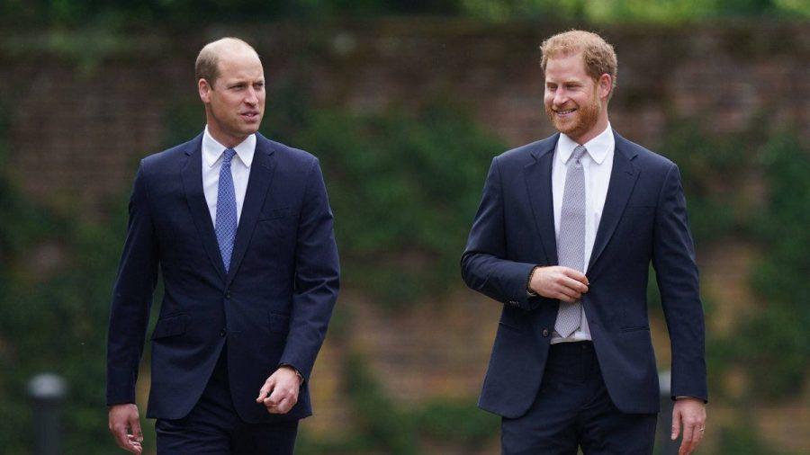 Prinz William und Prinz Harry im Juli bei einem gemeinsamen Auftritt in London. (hub/spot)