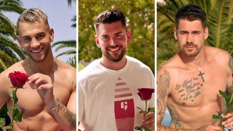 """""""Bachelor in Paradise"""" 2021: Serkan, Ioannis und Co., das sind die Single-Männer"""