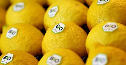Wer Zitronen für einen Zitronenabrieb verwenden möchte, sollte dafür ausschließlich zu Bio-Zitronen greifen.